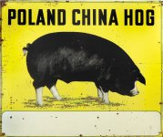 Poland China Hog sign Thumbnail